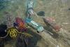 Swim away little squid, Artworks for Below the tide Line, GOMA. Image Lynette Griffiths & Erub Arts